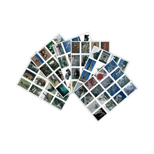 LOT 96 IMAGES BON POINT 6X8CM
