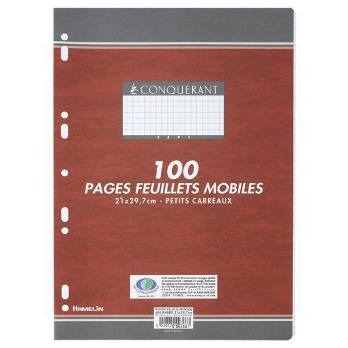 PAQUET 100 PAGES FEUILLETS MOBILES A4