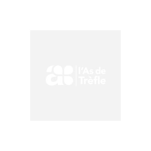 DISQUE DUR EXT 2.5' ADATA SC680 SSD240GO